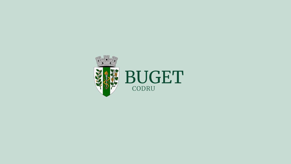Executarea Bugetului pentru anul 2015